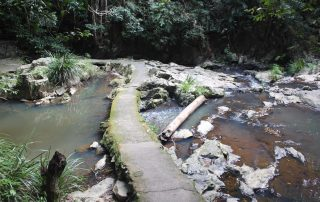 Kuranda Creek