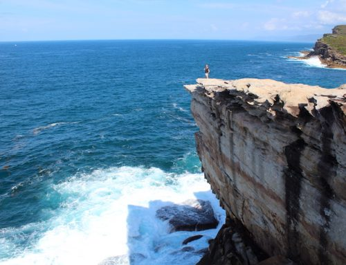 Sydney Royal National Park