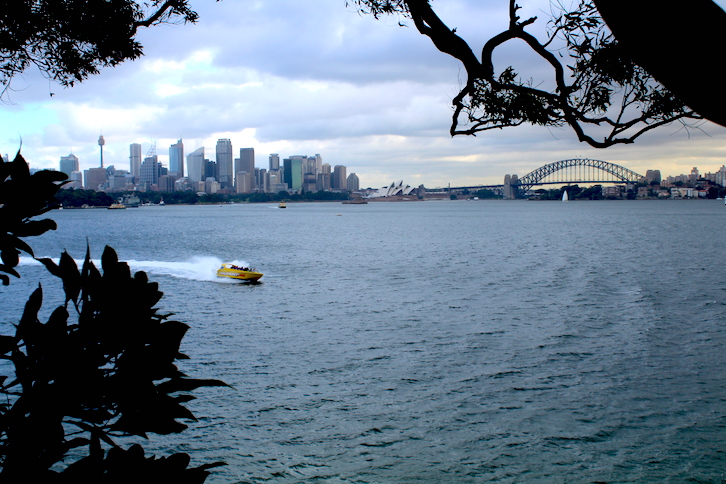 Winter Skyline Sydney